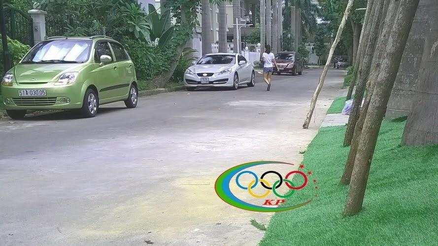 Để cỏ nhân tạo sử dụng ốp tường sinh động