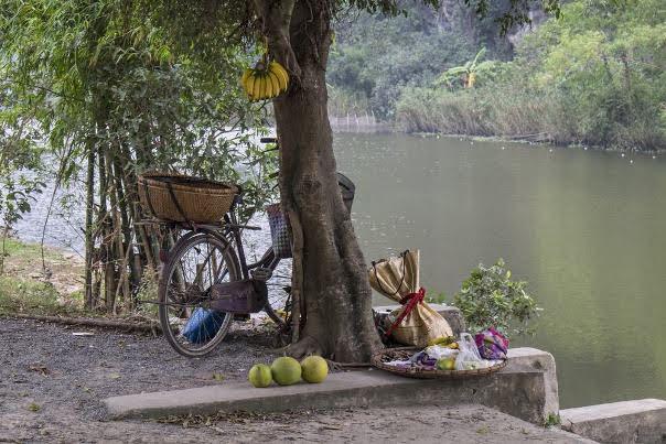 Ninh Binh Riverside