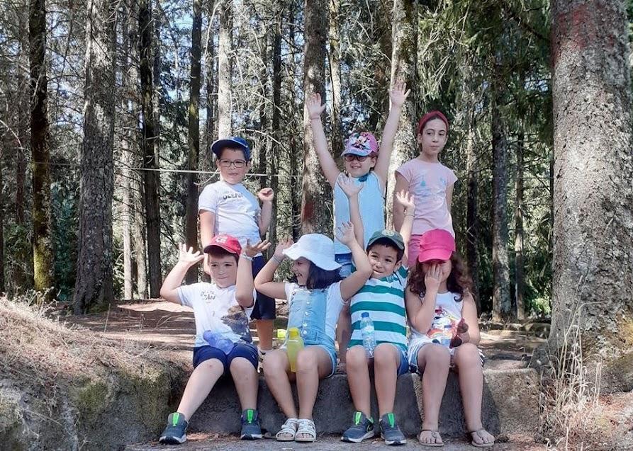 Misericórdia de Lamego promove atividades de verão em segurança