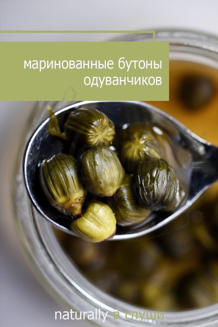 Маринованные бутоны одуванчиков рецепт | Блог Naturally в глуши