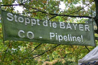 Transparent: «Stoppt die Bayer-CO-Pipeline!».