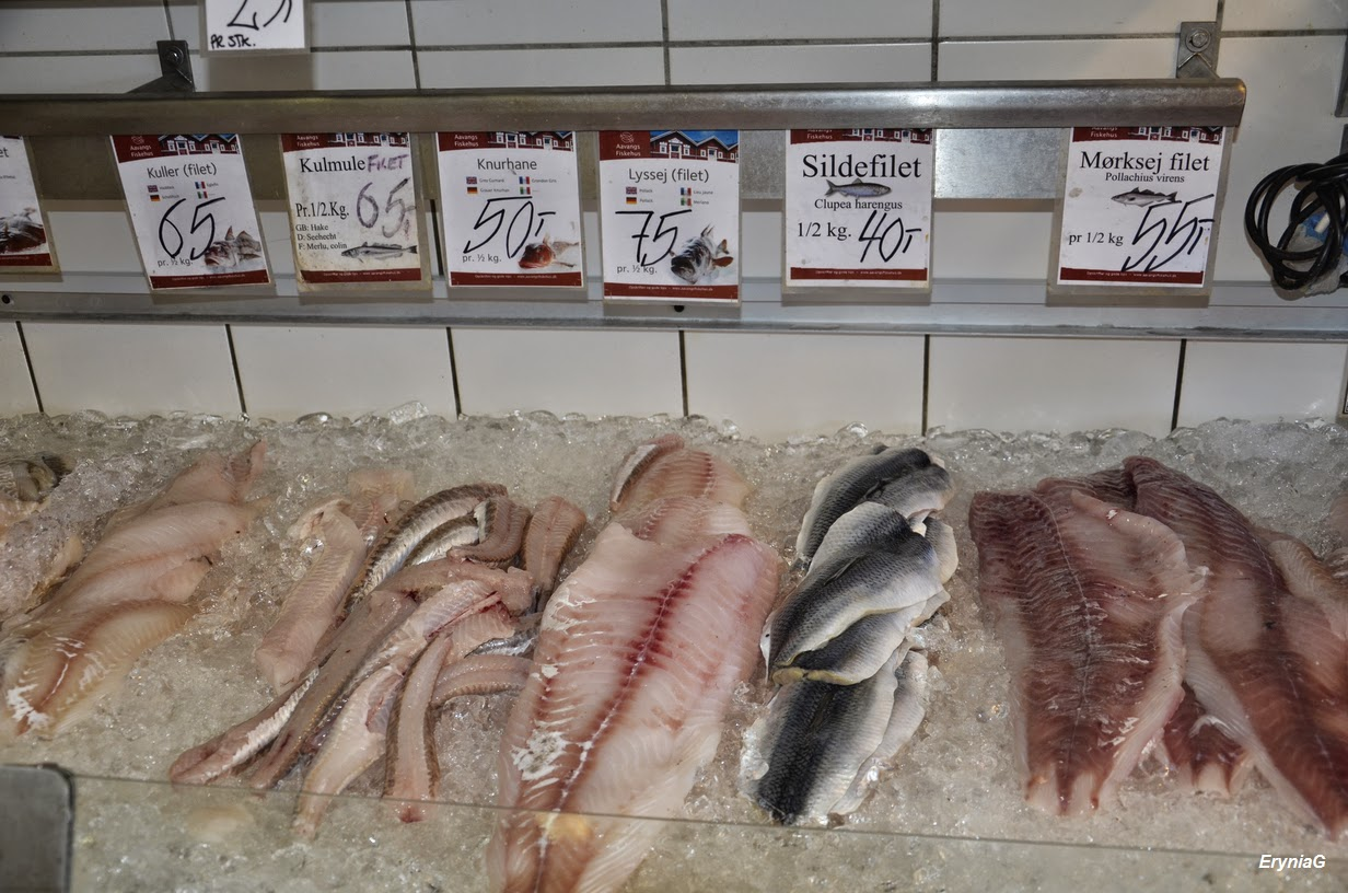 ryby wSkagen