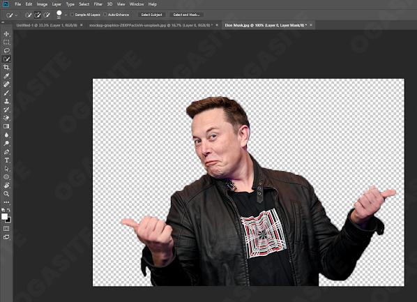 Hasil dari Selection di Foto Elon