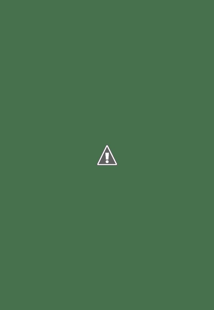 Anne Gabrielle M. dessine