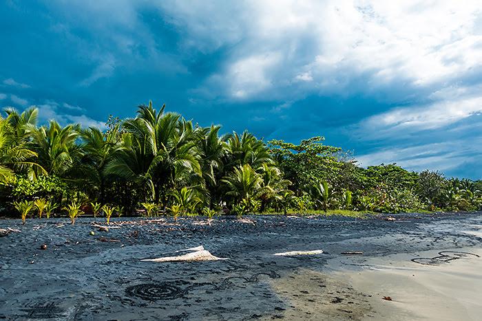 plaje, Playa Negra, Puerto Viejo, Costa Rica
