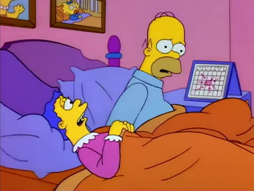 Los Simpsons 5x04 El oso de Burns