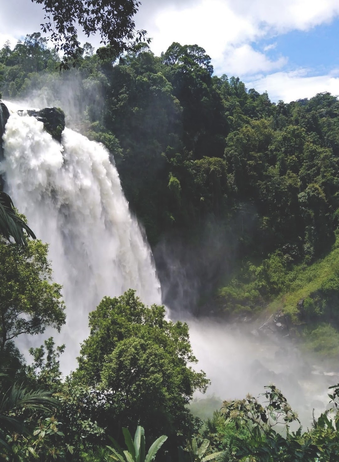 Aberdeen Waterfall