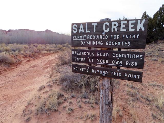 Entering Salt Creek