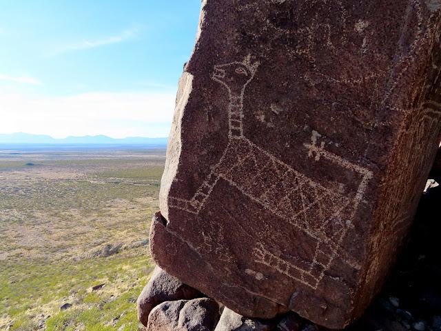 Impressive mountain lion petroglyph