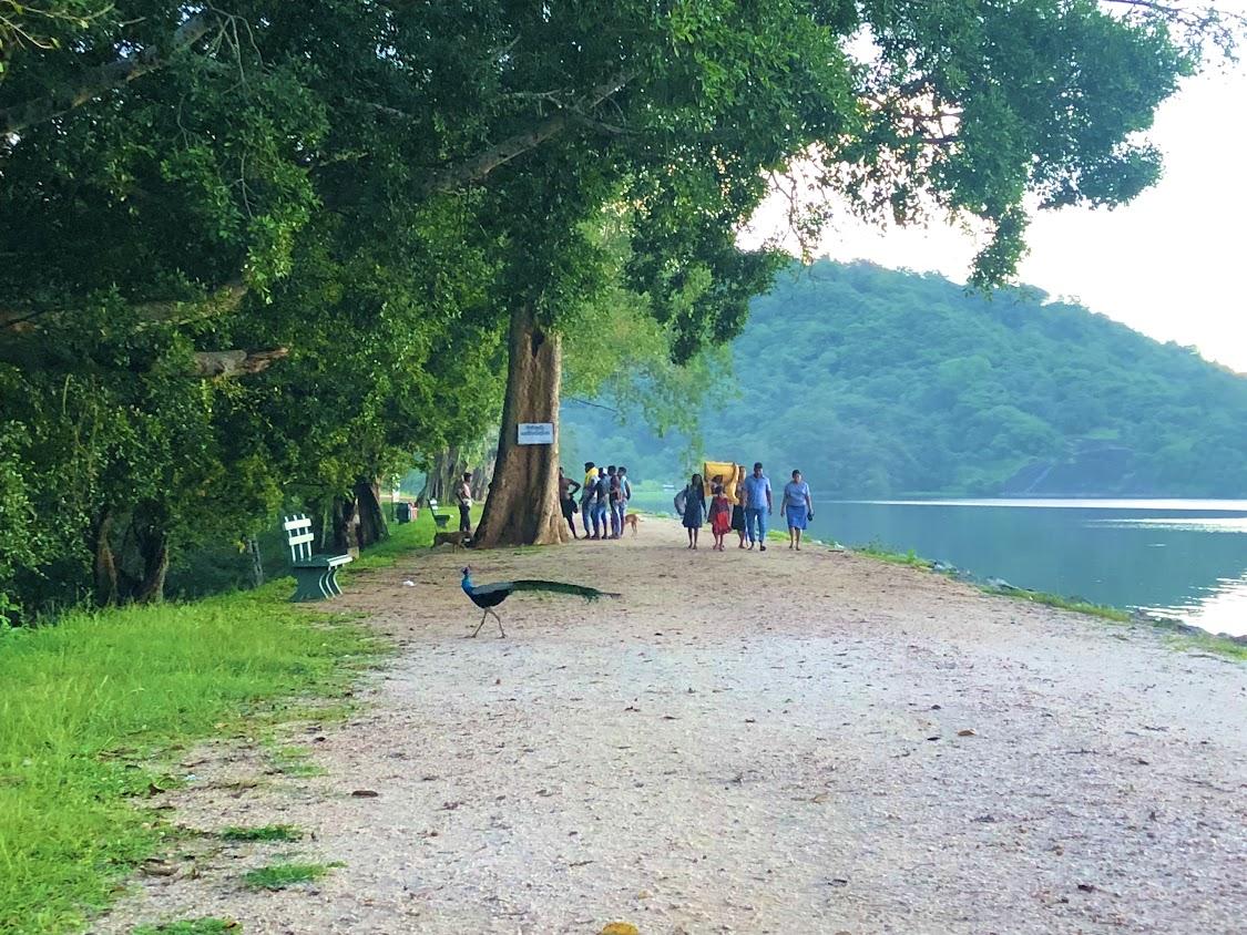 Sorabora Wewa Sri Lanka