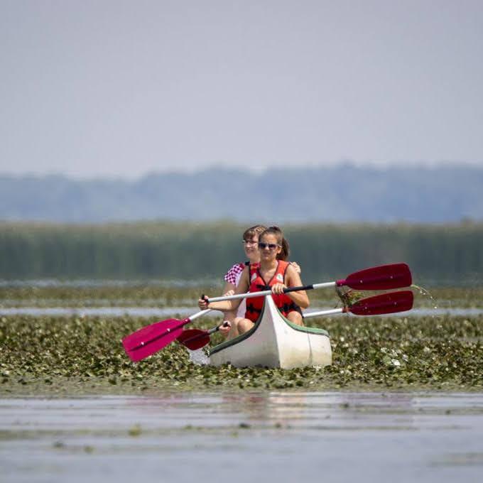 ÖkoPort Tisza-tó Saurd Élményfalu