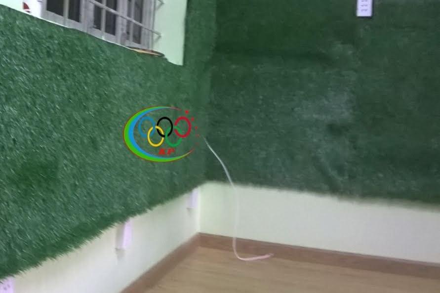 Mặt hàng thảm cỏ nhựa này thấy ngày một nhiều hơn