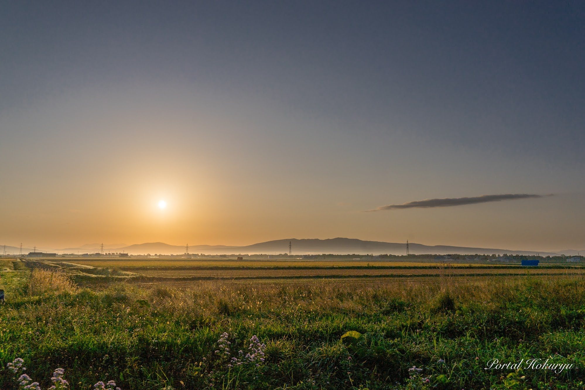 黄金の朝陽