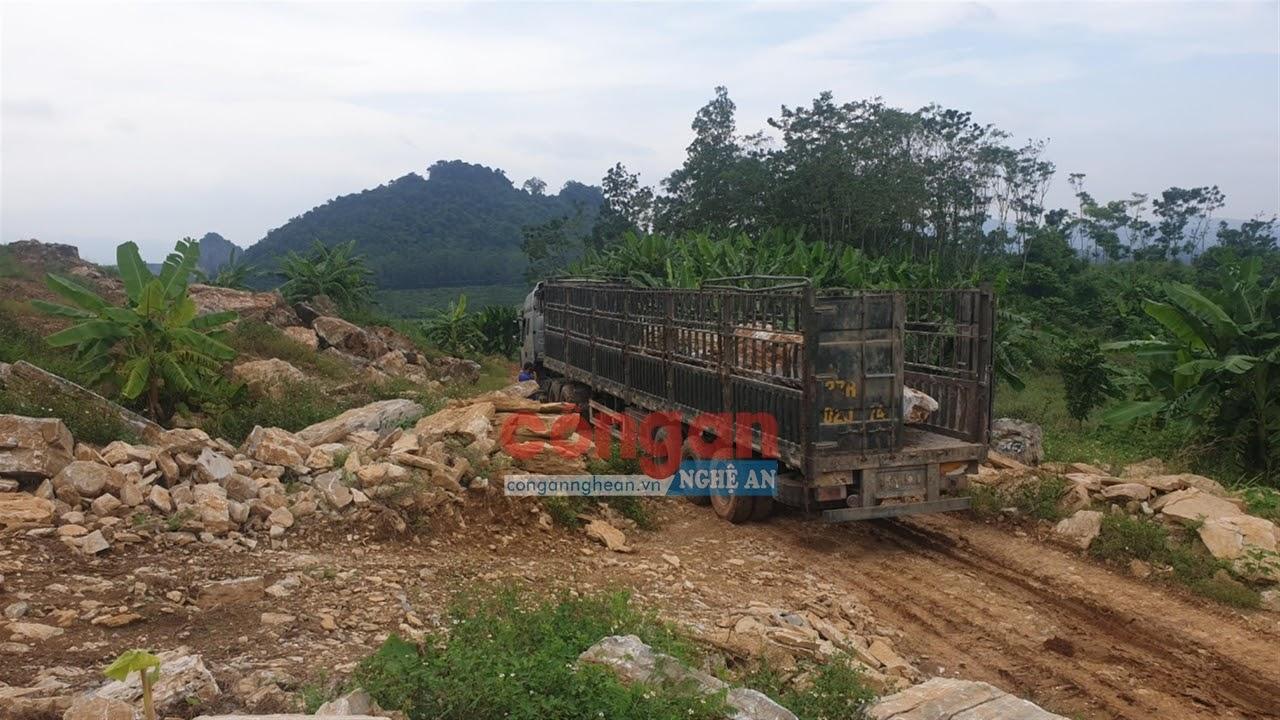 Xe tải di chuyển vào bãi đá để lấy hàng mang đi
