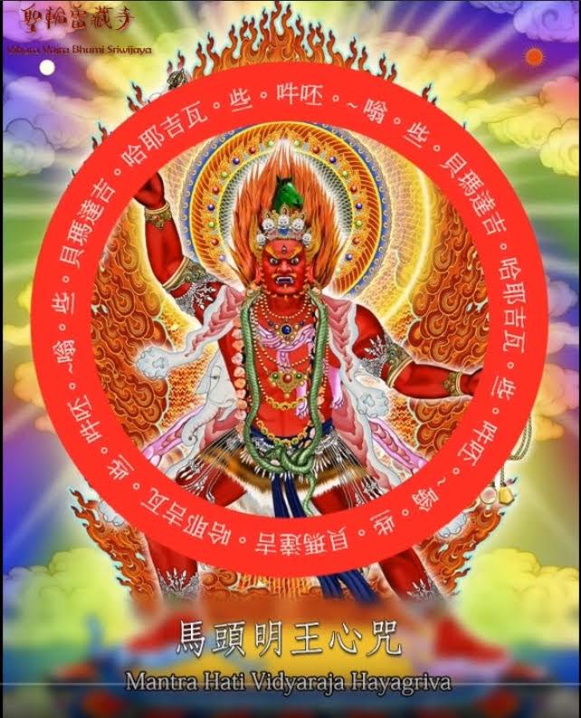 Multimedia Mantra Vidyaraja Hayagriva