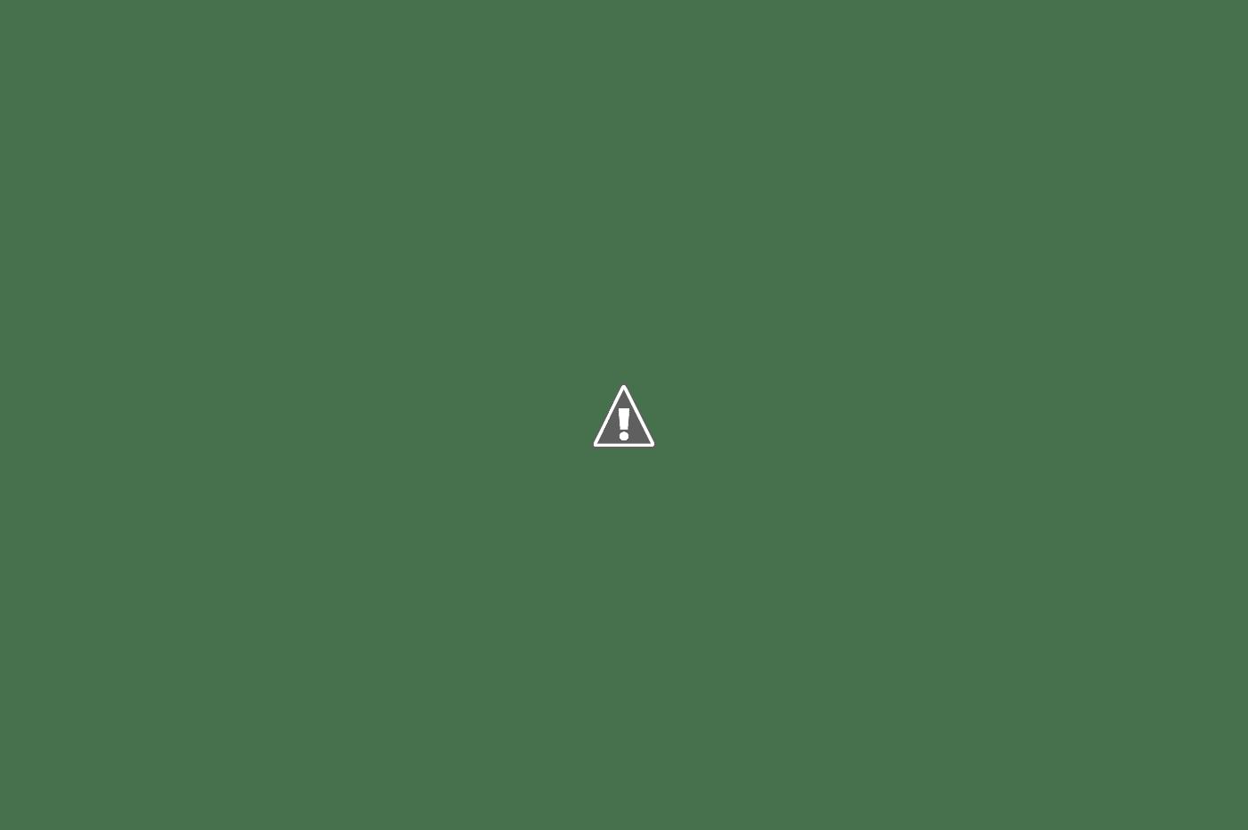 Căsuța din hambar