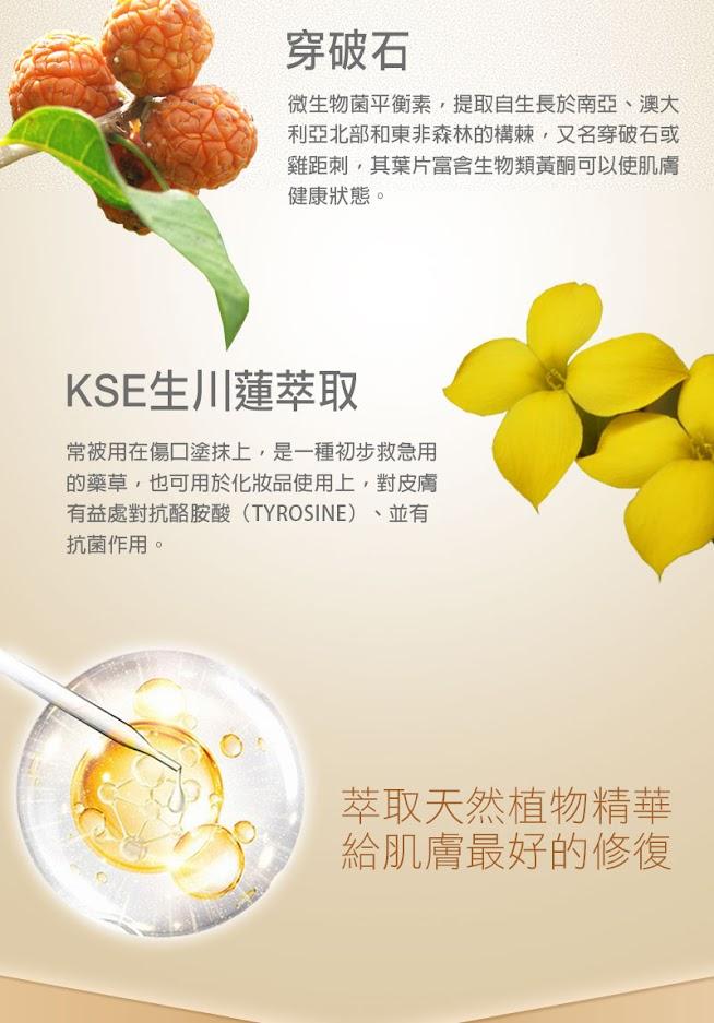 穿破石,KSE生川蓮萃取,萃取天然植物精華給肌膚最好的修復