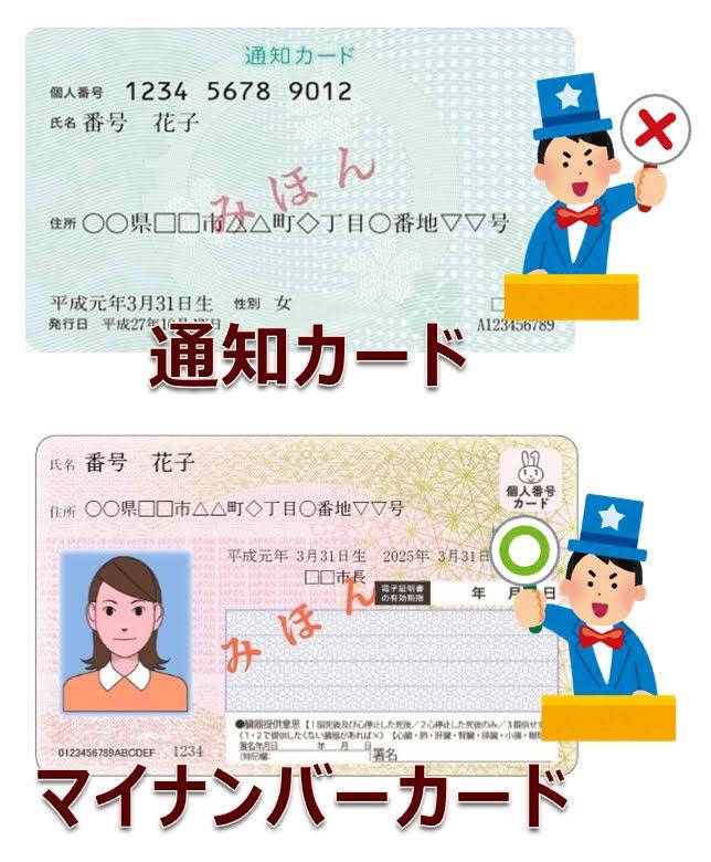 マイナンバーカードと通知カードの違い