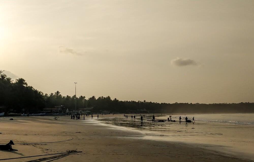 palolem beach south goa india.jpg