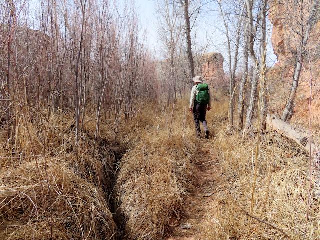 Exploring past Peekaboo Spring