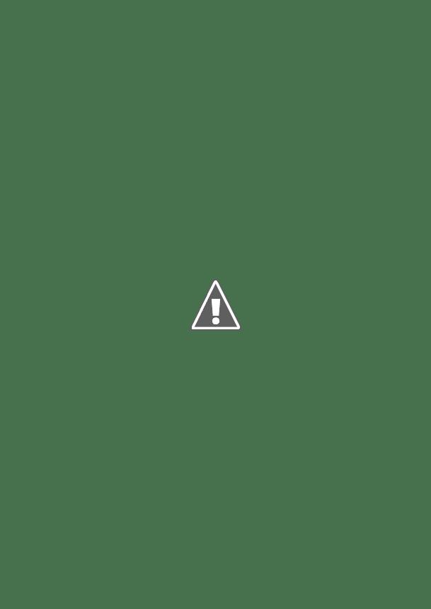 コロコロ11月号「あつ森 夢番地コレクションBOOK!!」に私の島が紹介されました