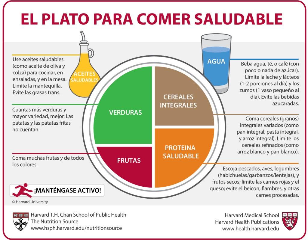 el-plato-de-Harvard-nutrición-equilibrada