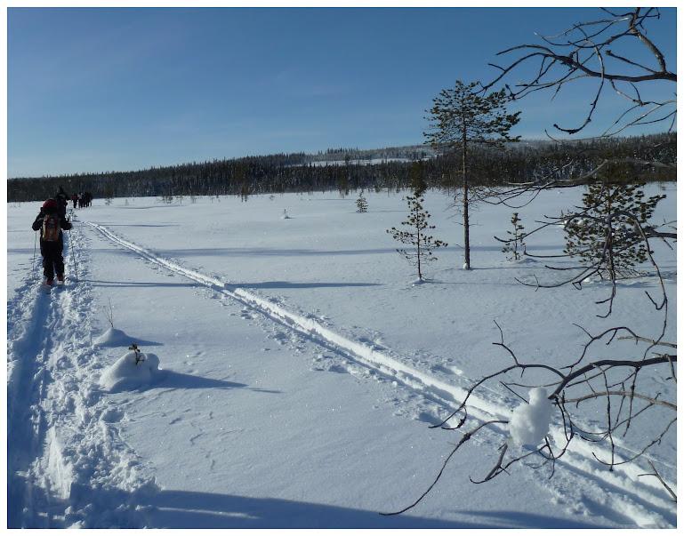 Promenade en terres same (frontière suédo-finlandaise) - Page 3 ACtC-3fx-etdRf4O52NdqLxAMWiwlPH8mr_EKucrZ2NVZRsphmGbk_bb1f3X2kG3qoQ5xWsgTHVBC4D7xPrPgx35a3_elm7w9uNzw7Qbwg4Hd7bHvZ2QEiA_0Z7j7YZV2VqMdWLIwteAUX3xbldZoelOM4hb=w769-h603-no