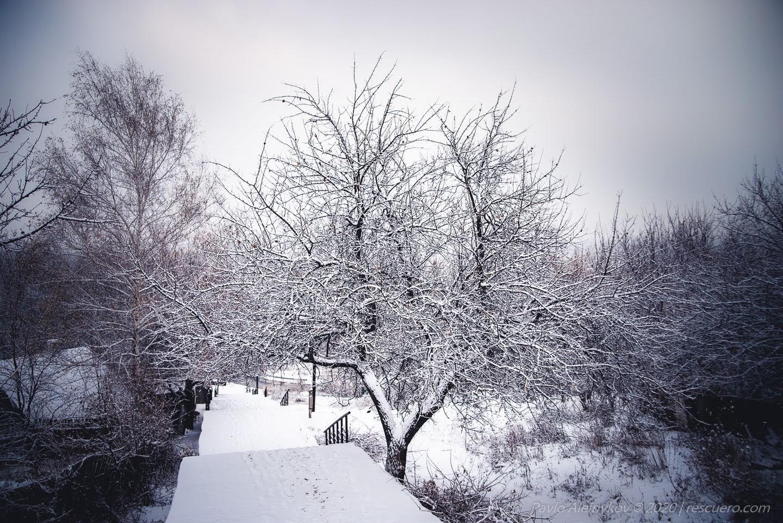Сходи зі снігом