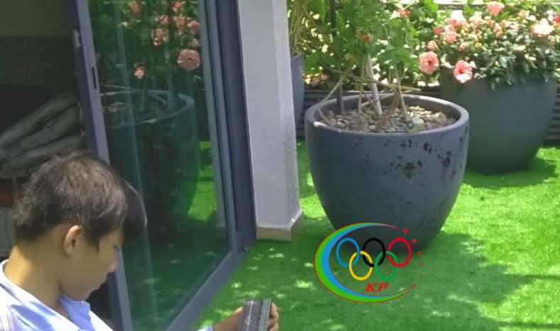 Địa điểm cho trẻ em vui chơi bằng Cỏ nhựa nhân tạo