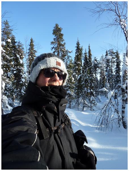Promenade en terres same (frontière suédo-finlandaise) - Page 3 ACtC-3fyVg7fzcZs-SO24VxxwA6j1GLmHGqX_oSfRbM90ZbYgJ8J80X6OckmRK2cWPNKPqKc3Y-MnPhluTqlhQUNBWbDqQmisUSWG1lzyGztycmM_n6AGJQybEgEJpmWh8GO_ZiEknTi-ZHYE791UeMAxenh=w455-h603-no