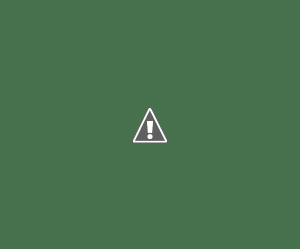 FERIA DE CÁRITAS