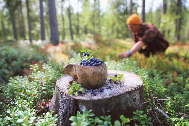 duurzaam-reizen-finland