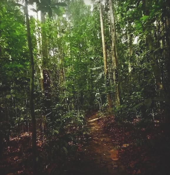 Horagolla National Park