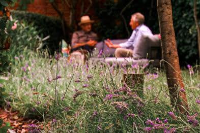 Van droom tot tuin, tuinprogramma vanaf 17 oktober op Plattelandstv: aflevering 4