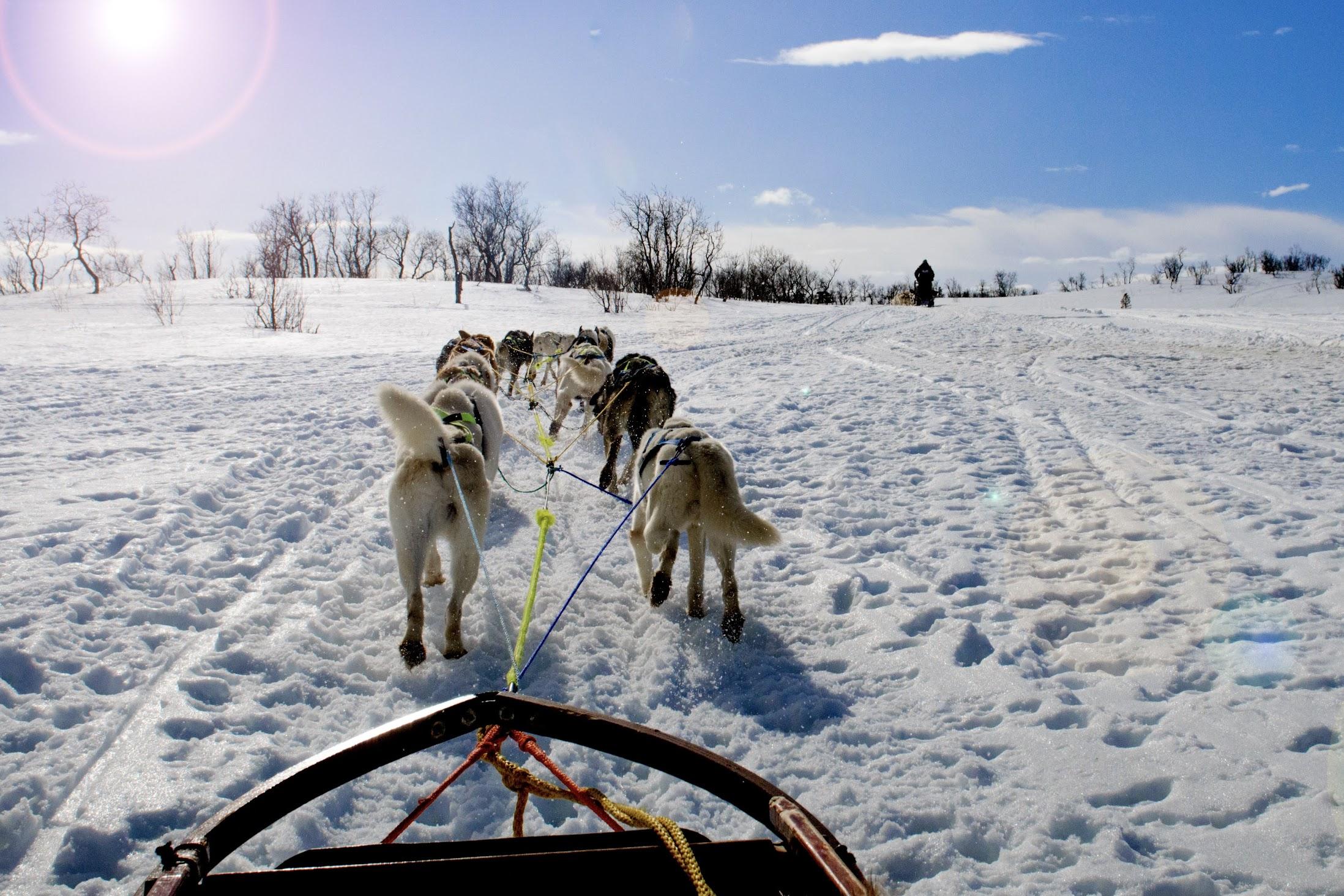 vakantie-lapland-winter
