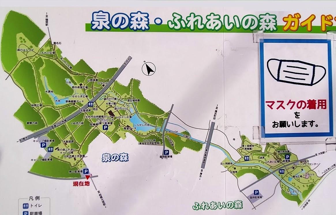 大和 泉の森・ふれあいの森 ガイド案内