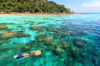 Snorkel Tour to Surin Islands by Siam Adventure World from Khao Lak