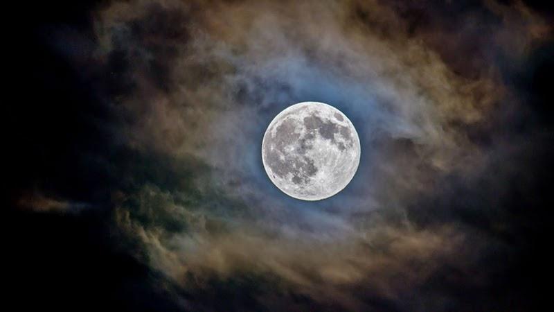 Hold világnapja 2021