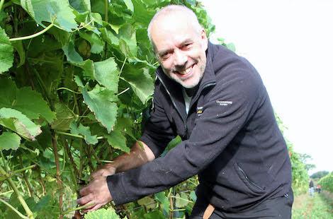 Local vineyard 'grape-ful' for volunteers