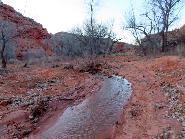 Flowing water in the Gulch
