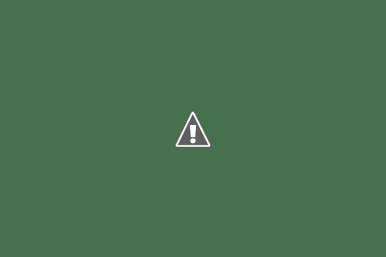 El plantel llegó al país tras la consagración ante Brasil. Los futbolistas arribaron en micros y luego se fueron en sus vehículos personales.