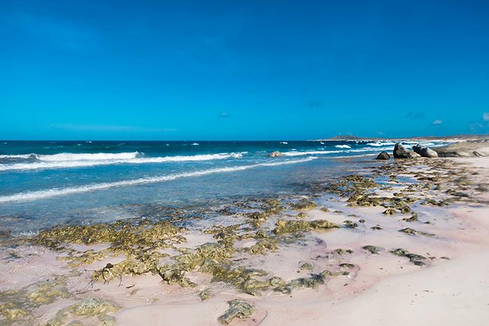 Plaja Westpunt, Aruba