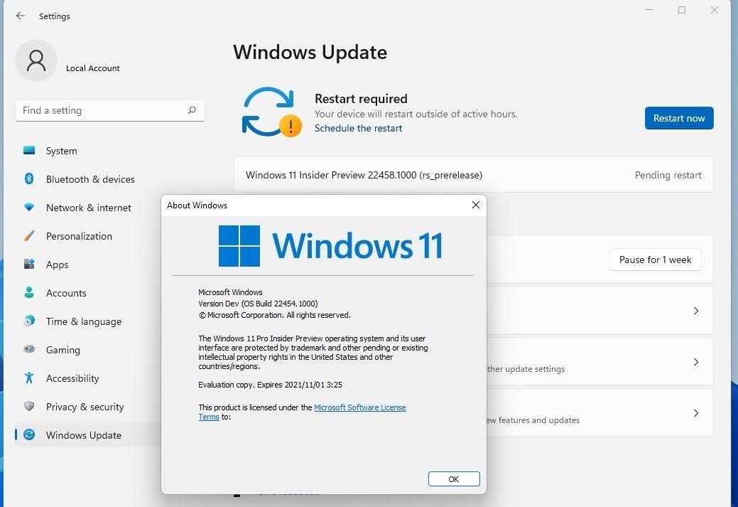 Build22454.1000 Windows 11の仮想マシンでもTPM の要件が一応クリア・・・インストーラーの制限がなくなる。