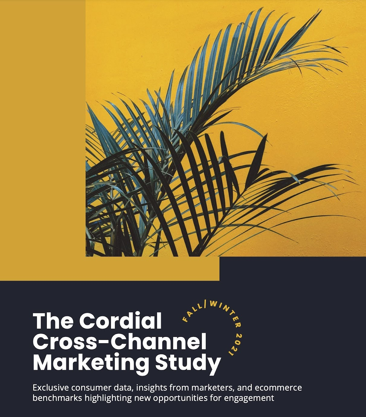 Cross-Channel Marketing Study highlighting new opportunities for engagement