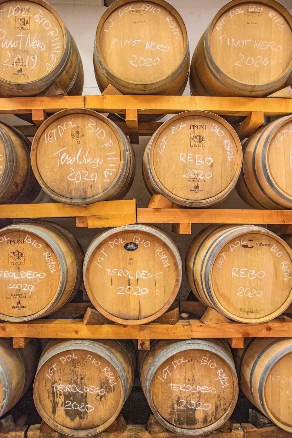 wijnproeverij-trentino