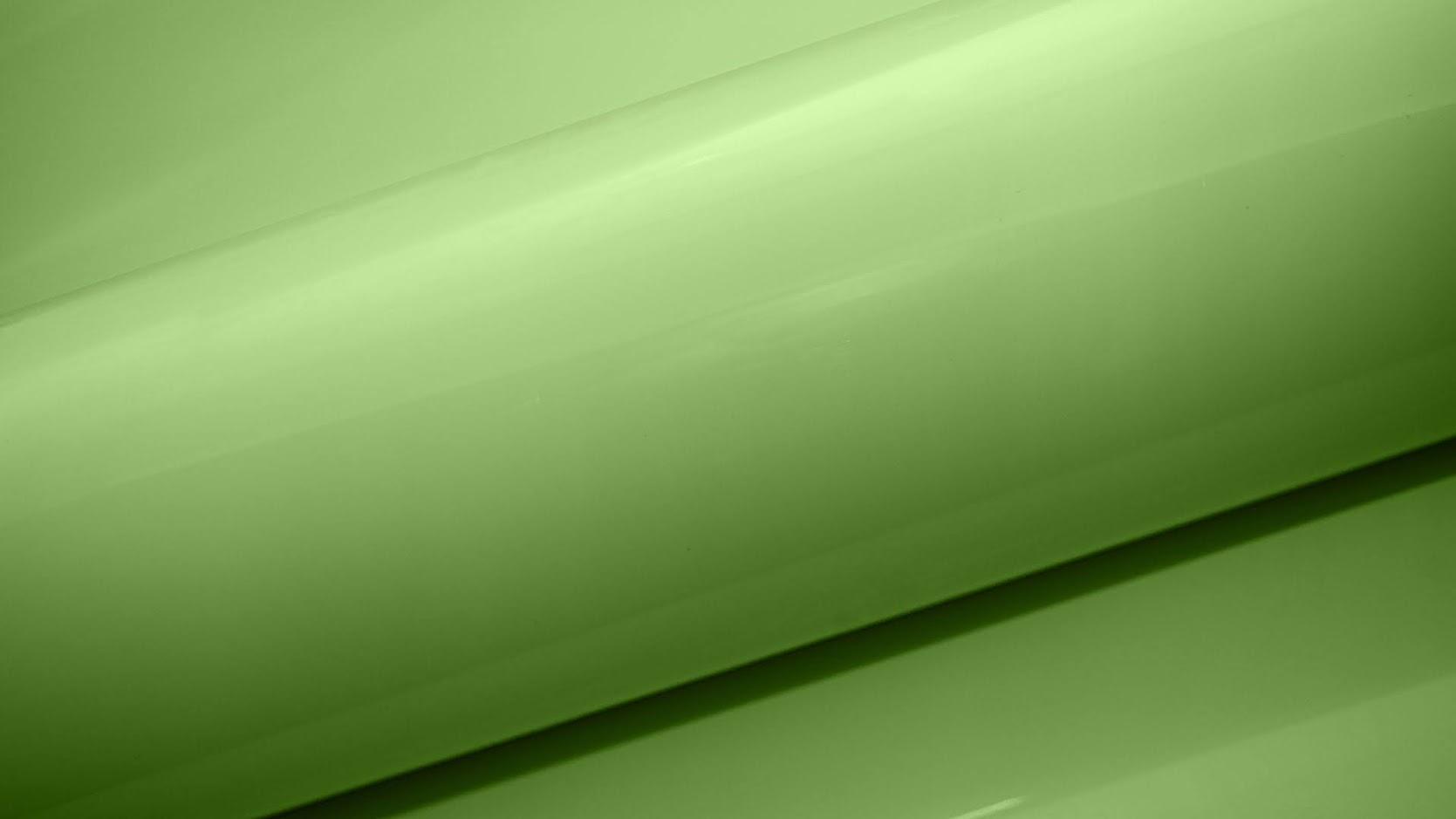 Светло- зеленый BS 2169-55 Адилет