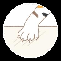 TOLI寵物止滑地毯不勾指甲