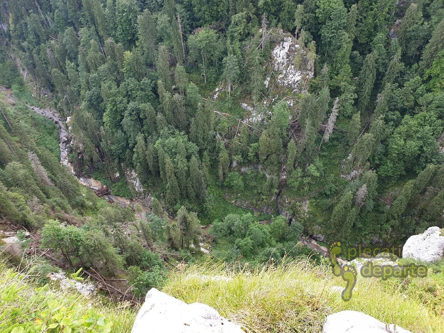 Cheile Somesului Cald vazute de pe unul dintre versanti, in Parcul Natural Apuseni. obiective turistice cluj,