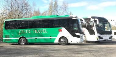 PSV and Mini Bus Drivers