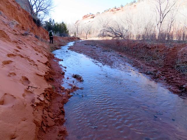 Sandy creekside
